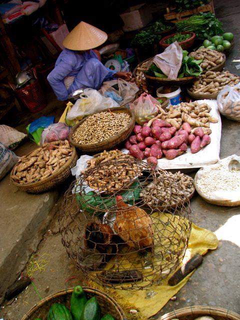 zdjęcia z podróży do Wietnamu