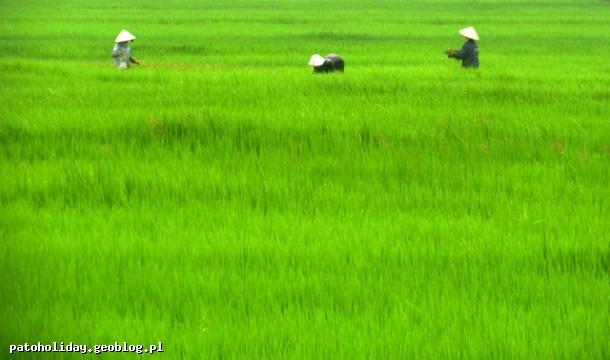 fotografia podróżnicza wietnam