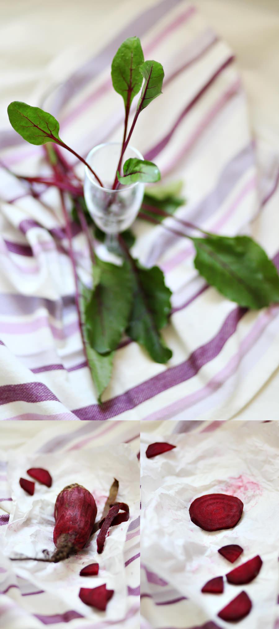 fotografia młode liście buraka zwane botwinką