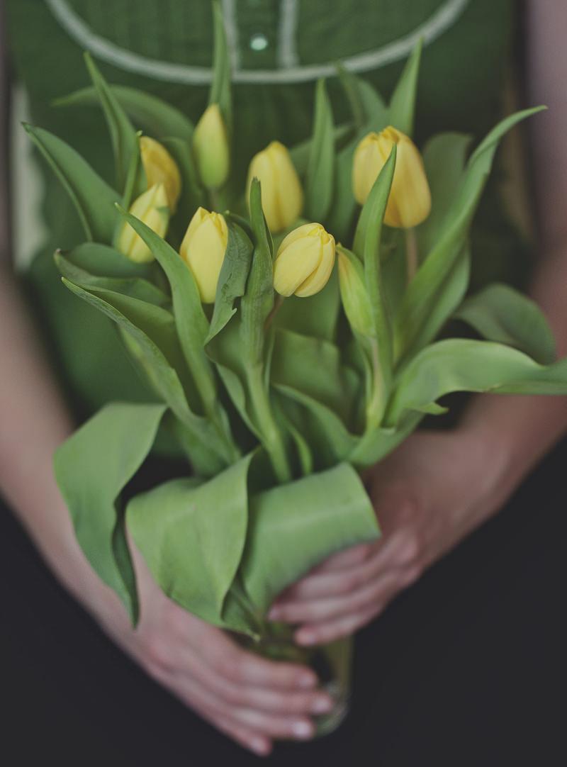 bukiet tulipanów zdjęcie
