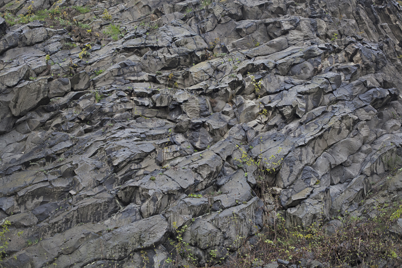 ściana bazaltu Wilcza Góra