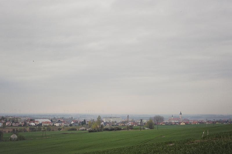 widok na Złotoryję