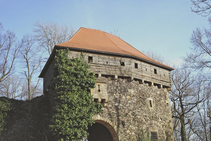 zamek grodziec fotografia